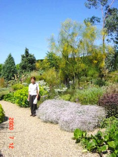 Beth Chatto Gravel Garden